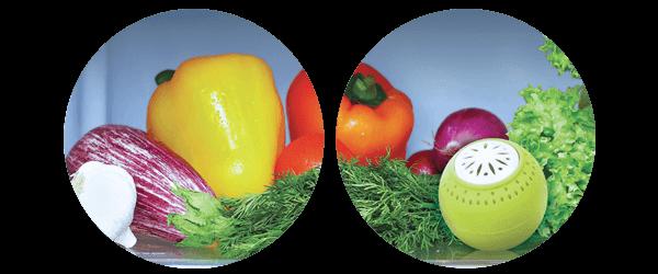 always-fresh-fridge-ball-use